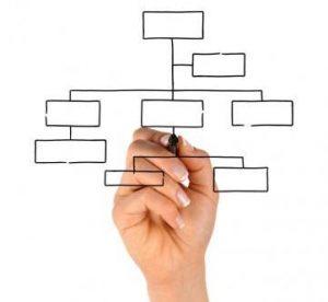elaborar-organigrama-empresa